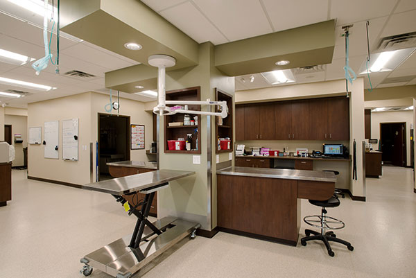 Surgical table: Photo Gallery in Waynesboro
