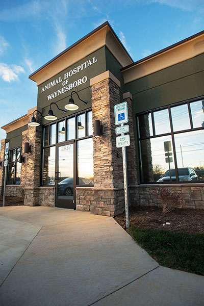 Hospital entrance: Photo Gallery in Waynesboro