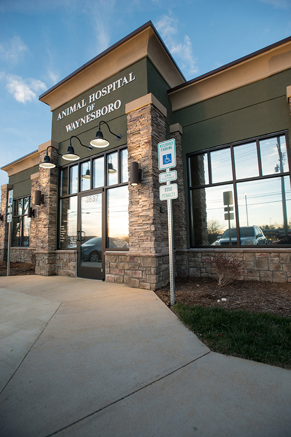 Outside our animal hospital: Contact Us in Waynesboro