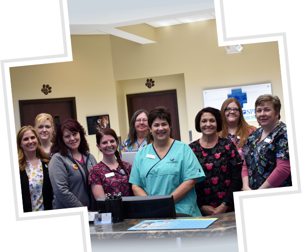 Our staff: Animal Hospital of Waynesboro