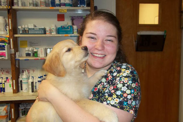 Vet holding golden retriever puppy: Pet Surgery in Waynesboro